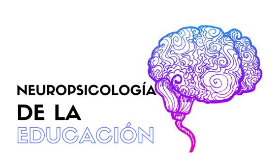 Especialista en Neuropsicología de la Educación