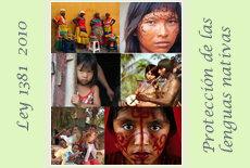LEY 1381 DE 2010 Lenguas Nativas