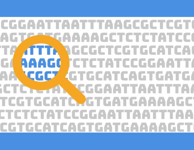 """""""Recortaron"""" el número de genes codificantes de proteínas que tiene el genoma humano"""