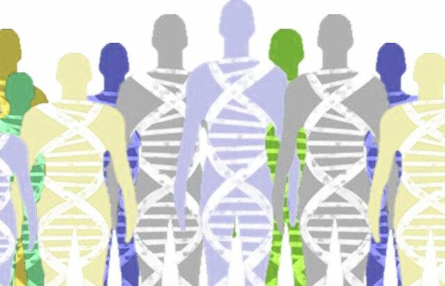 Entendimiento de nuestra herencia genética: Proyecto del genoma humano, primeros cinco años, AF 1991-1995