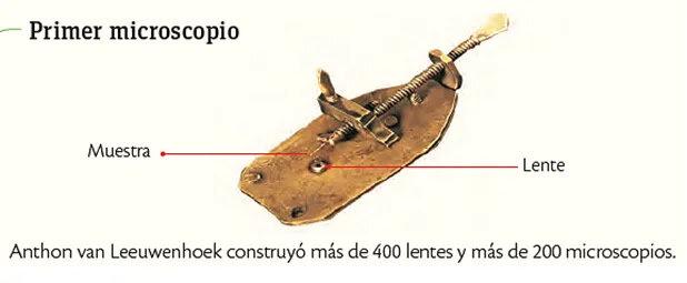Primer microscopio.
