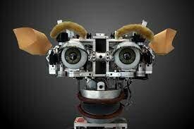 Criatura Robótica