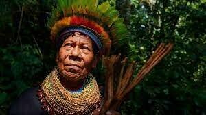Educación indigena
