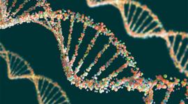 El avance de la genética timeline
