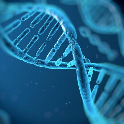 LOS 4 PARADIGMAS DE LA BIOLOGÍA timeline