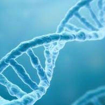 ADN timeline