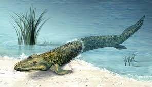 Algunos Animales Emergen del Agua