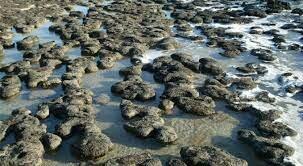 3500MA Aparición de los estromatolitos y Formación de la atmosfera