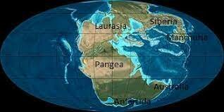 200MA Formación de Pangea