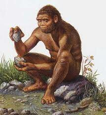 1.5MA Homo erectus