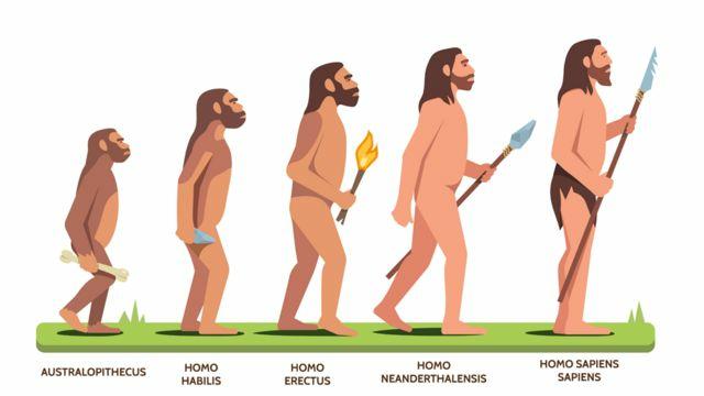 1MA Homo Sapiens