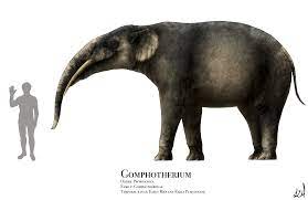 Gomphotherium