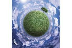 Reglamento de la Ley General para el Desarrollo Forestal Sustentable.