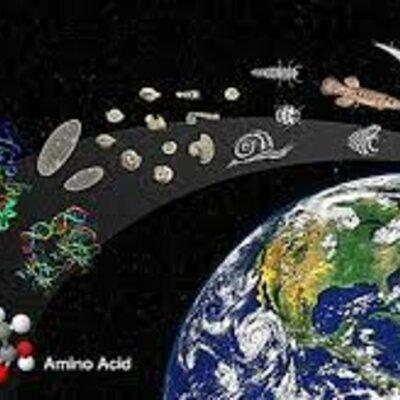 INICIOS DEL PLANETA TIERRA HASTA LA EVOLUCIÓN CELULAR DE PROCARIOTAS Y EUCARIOTAS timeline