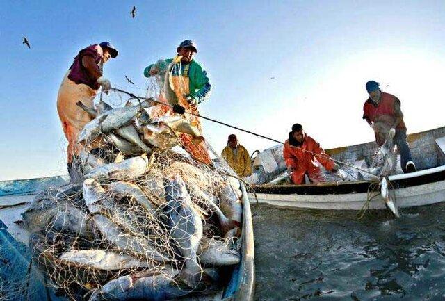 Nueva Ley de Pesca