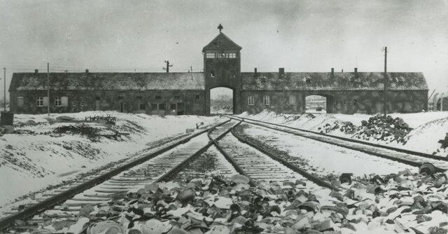 Daniel arrives at Auschwitz