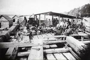 L'industrie du bois