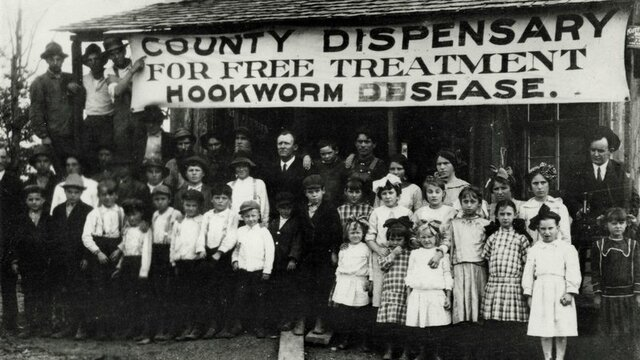 The Scourge of the South—Hookworm