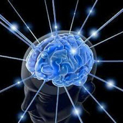 ¿De dónde viene y para dónde va el cerebro? timeline