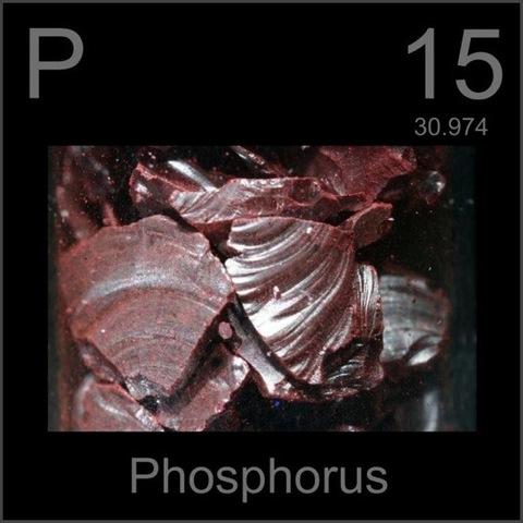 Phosphorus (P) 15