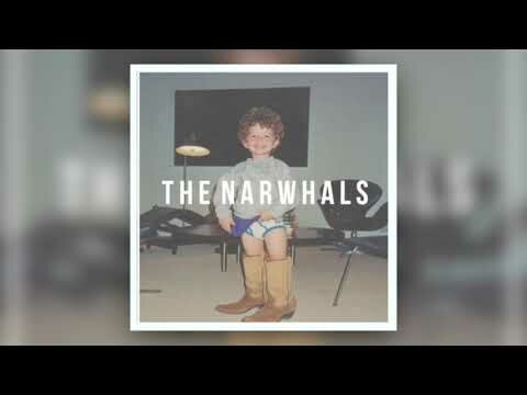 The Narwhals