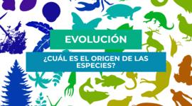 """""""EVOLUCIÓN Y SUS PENSADORES"""" timeline"""