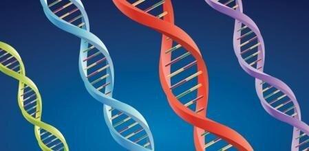 Descubrimiento de la estructura del ADN