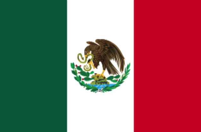 Bandera de Carranza