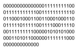 Codi binari