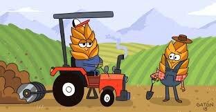 los agricultores empiezan a meter maquinas al cativo