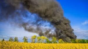 un incendio que consumió parte de la sierra dejando una parte sin poder recuperar  a causa del ser humano