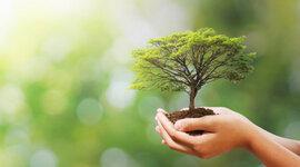Cumbres, foros y conferencias sobre el Desarrollo Sustentable timeline