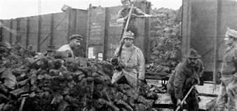 França ocupa les mines de carbó alemanes