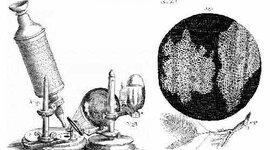 LA TEORÍA CELULAR  fue producto de los aportes de varios científicos. Descubrieron la composición e influencia de las células en los procesos de nutrición, reproducción y herencia. timeline