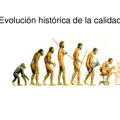 Evolución de la calidad_ Silva Carranza Carlos timeline