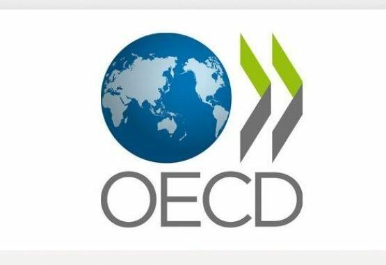Resultados y procesos OCDE