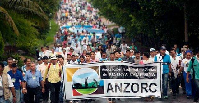 Asociación Nacional de Reservas Campesinas