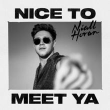 """World tour """"Nice to meet ya"""""""