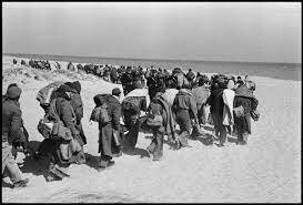 Fuig del Camp d'Argelers.