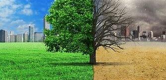 Canvis a el medi ambient