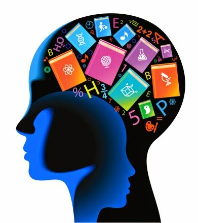 Teorías neurocientíficas del aprendizaje