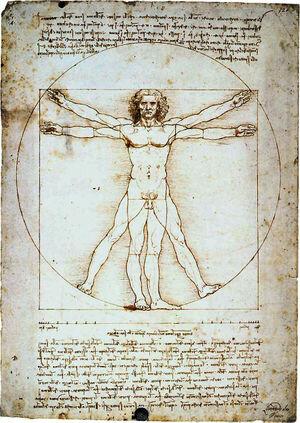 1463 – 1494  Renacimiento Humanista