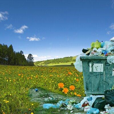 Material de los Residuos timeline