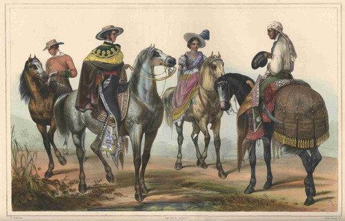 1836 EL CABALLO
