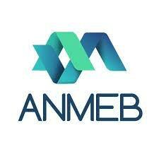 Acuerdo Nacional para la Modernización de la Educación Básica y Normal (ANMEB),