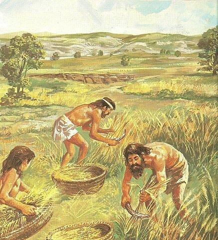 PUEBLOS AGRICULTORES