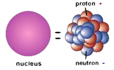 Neutron discovery