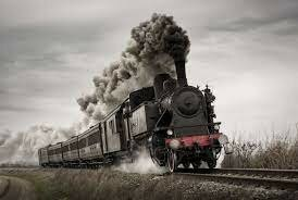 Premier train de bois