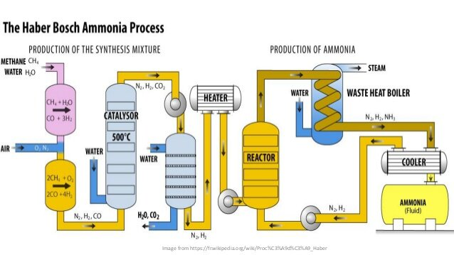 The Haber-Bosch process