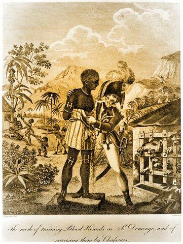 Consolidación del Tratado de Francia con Haití